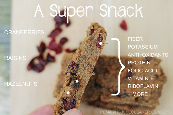 paleo cranberry raisin bars nutrients