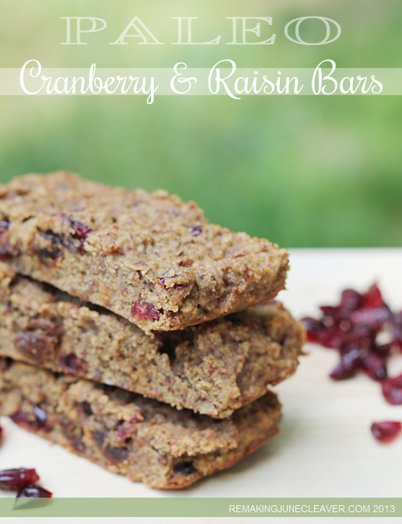 paleo quick easy cranberry raisin bars
