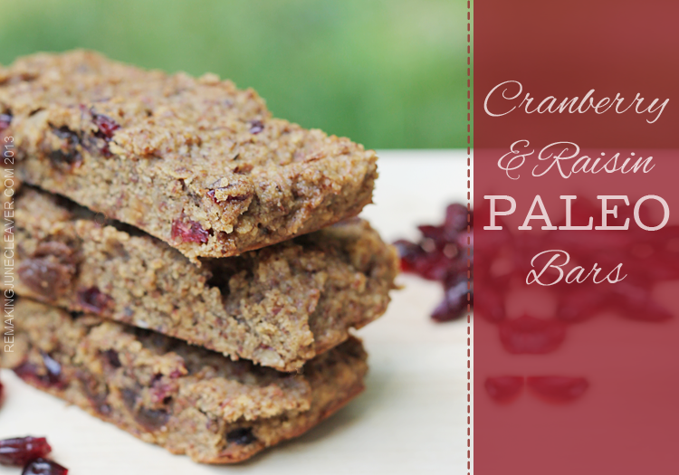 cranberry raisin paleo bars