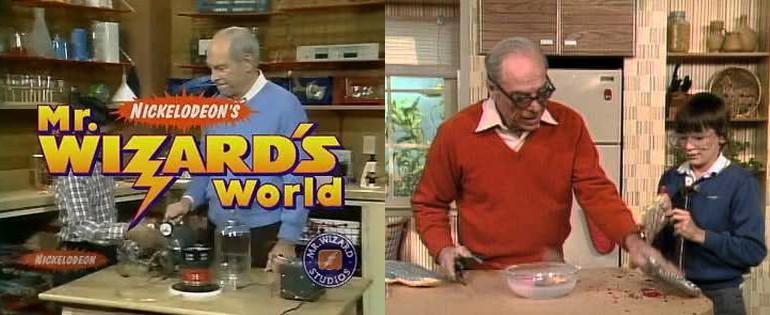 MR WIZARDS WORLD