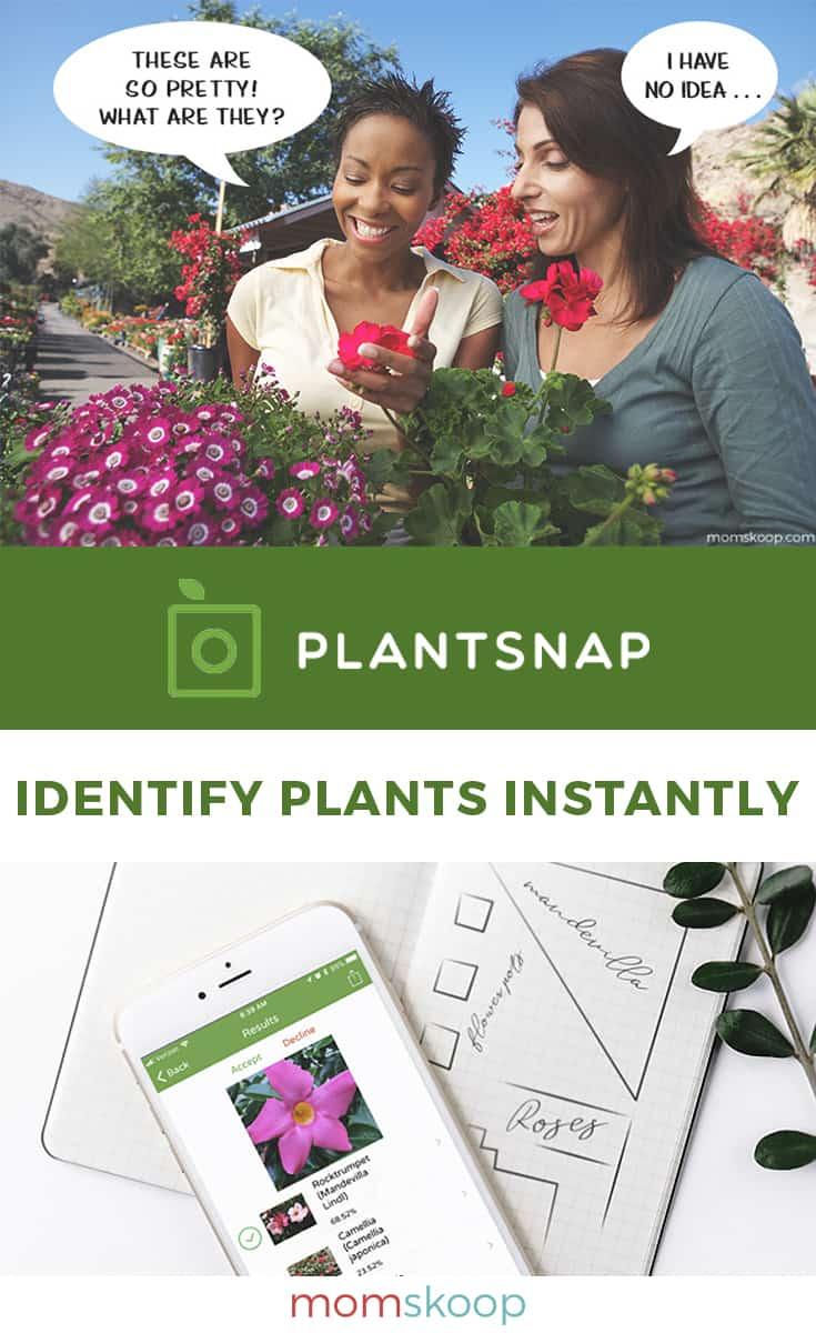 PlantSnap Plant Indentification App for iPhone and Android