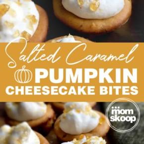 salted caramel pumpkin cheesecake bites
