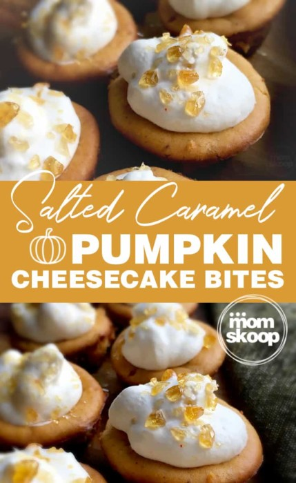 salted caramel pumpkin cheesecake bites