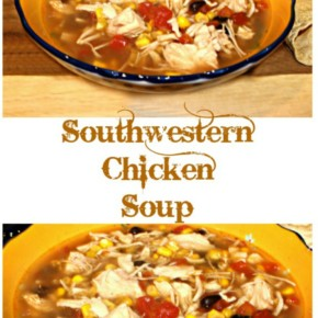 Southwestern Chicken Soup – How to make this tasty soup