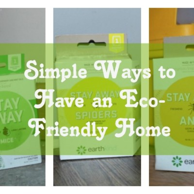 Simple Ways to Have an Eco-Friendly Home