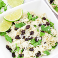 Cilantro Lime Chicken and Rice - An Easy Dinner Recipe!