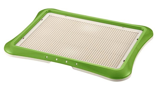 what to buy for new puppy indoor potty training tools potty tray