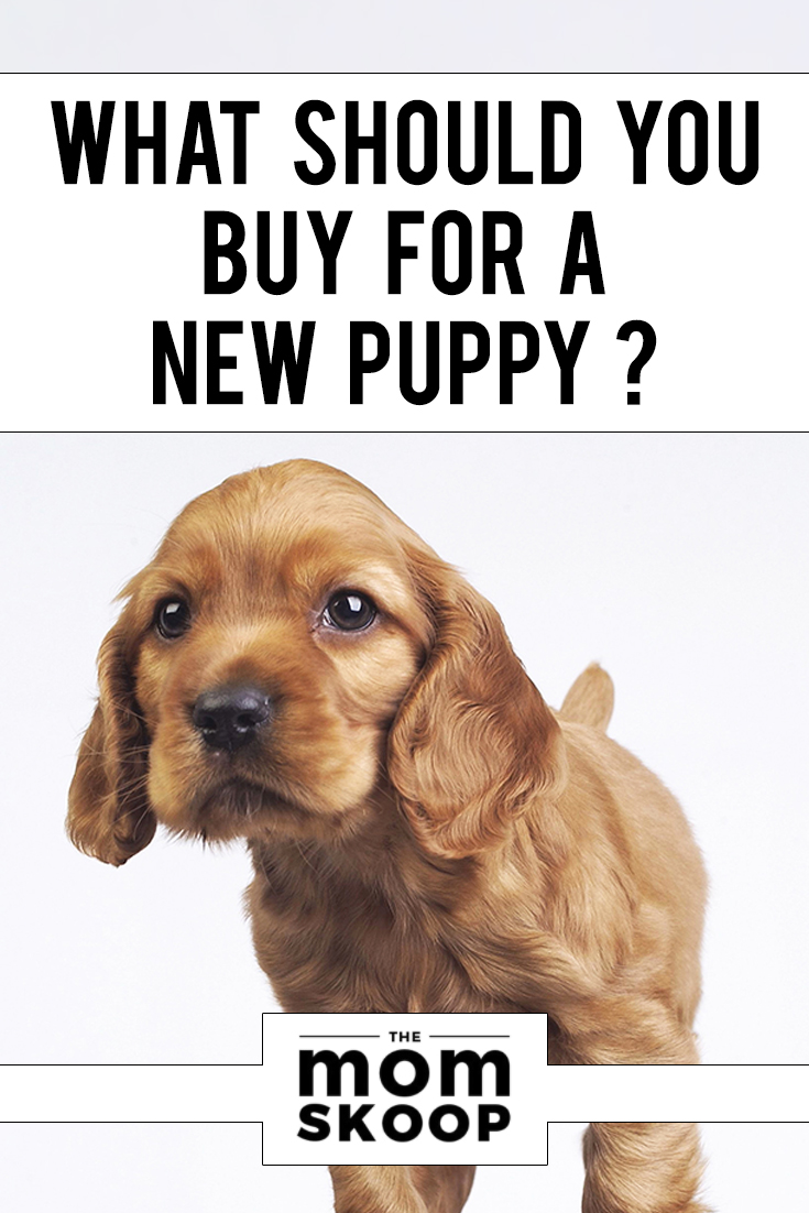 New Puppy Shopping List